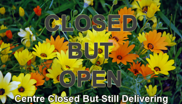 Centre Closed but Online Open