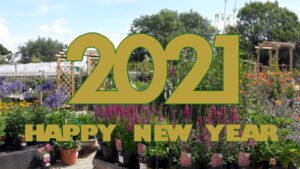 The Nursery Garden Centre New Year Image