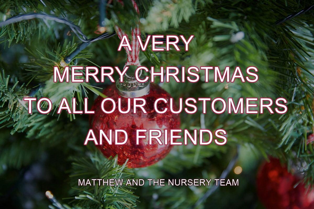 Nursery Christmas Wishes